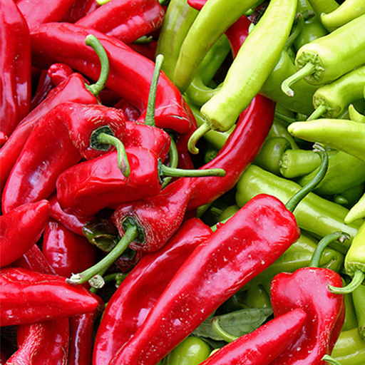 Chilli Recipes HD